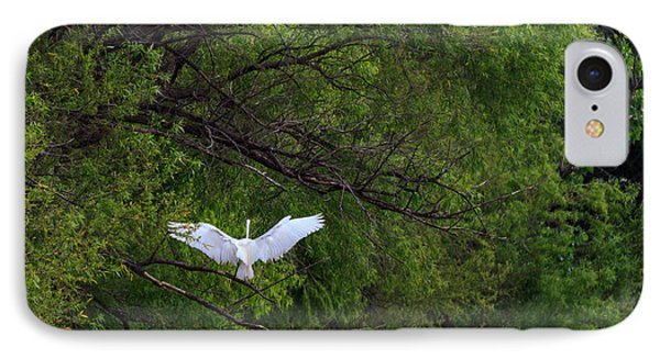 Great Egrets In The Shore IPhone Case
