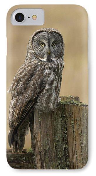 Great Gray Owl Phone Case by Doug Herr