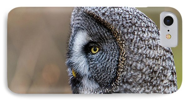 Great Grey's Profile A Closeup IPhone Case by Torbjorn Swenelius