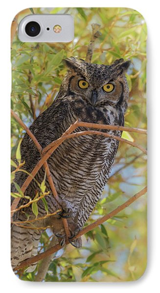 IPhone Case featuring the photograph Great Horned Owl At Summer Lake by Angie Vogel
