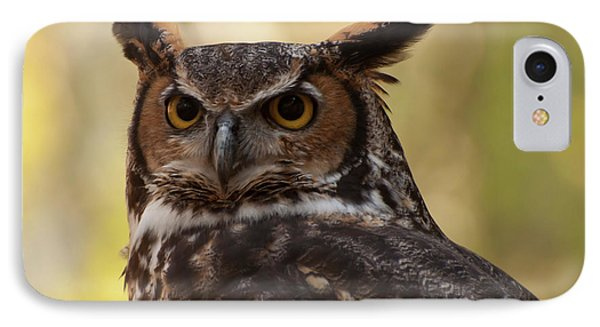 Great Horned Owl In A Tree 1 IPhone Case by Chris Flees