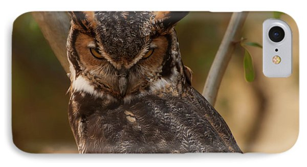 Great Horned Owl In A Tree 2 IPhone Case by Chris Flees