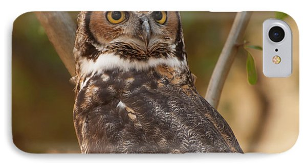 Great Horned Owl In A Tree 3 IPhone Case by Chris Flees
