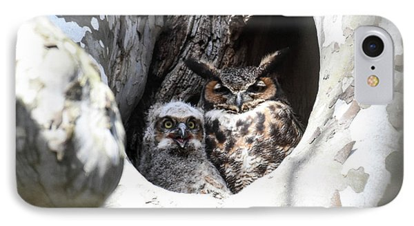 Great Horned Owl Nest IPhone Case by Gary Wightman