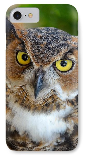 Great Horned Owl  IPhone Case by Richard Bryce and Family