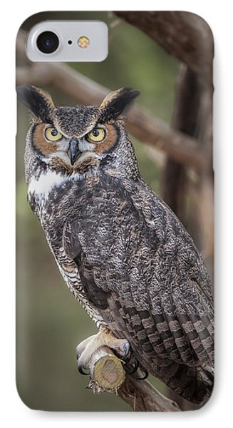 Great Horned Owl IPhone Case by Tyson and Kathy Smith