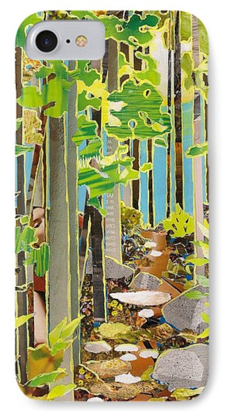 Great Maine Woods IPhone Case by Robin Birrell