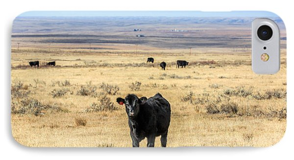 Great Plains Steer IPhone Case by Todd Klassy