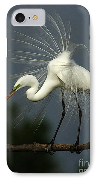 Majestic Great White Egret High Island Texas IPhone 7 Case