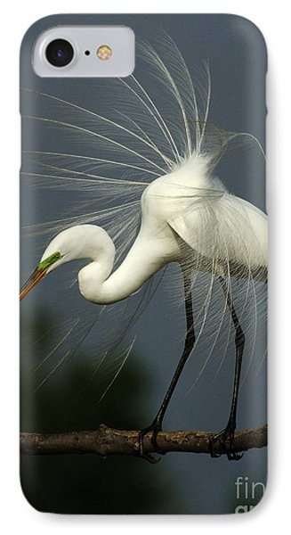 Majestic Great White Egret High Island Texas IPhone 7 Case by Bob Christopher