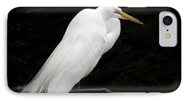 Great White Egret IPhone Case by Rosalie Scanlon