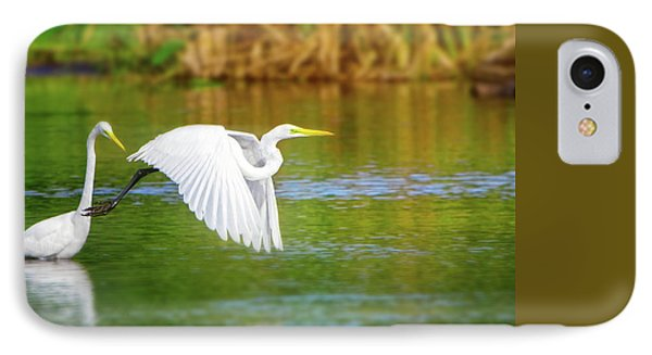 Great White Egrets IPhone Case by Mark Andrew Thomas
