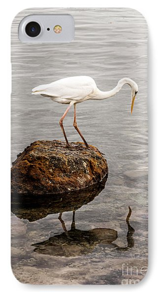 Great White Heron IPhone Case by Elena Elisseeva