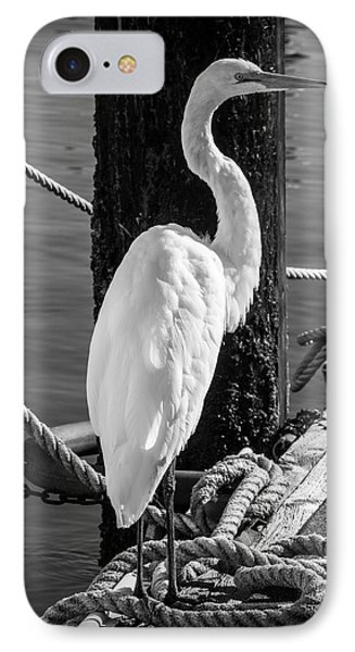 Great White Heron In Black And White IPhone Case by Garry Gay