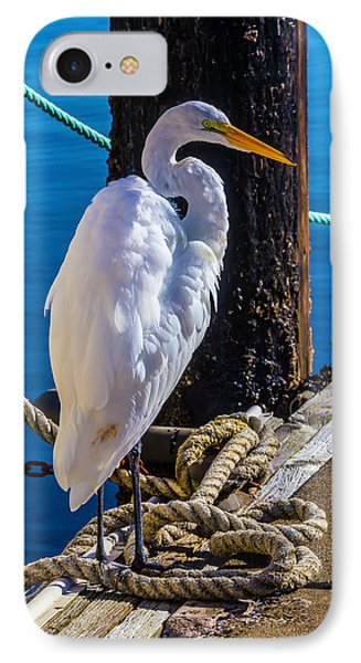 Great White Heron On Boat Dock IPhone Case by Garry Gay