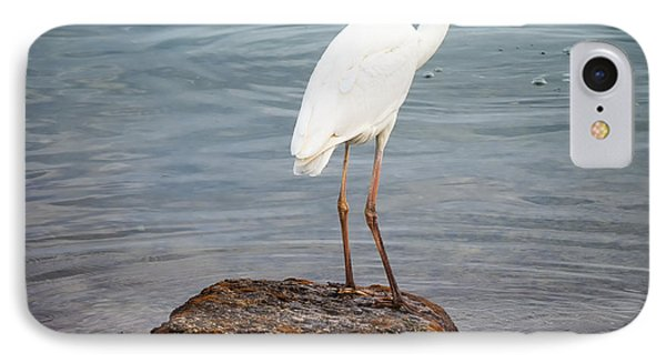 Great White Heron With Fish IPhone 7 Case by Elena Elisseeva