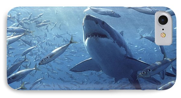 Great White Shark Carcharodon IPhone 7 Case