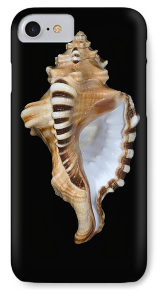 Great White Tooth Phone Case by Dave Fleetham - Printscapes