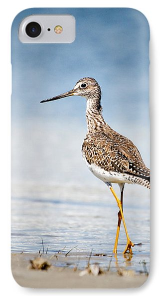 Greater Yellow Legs At Rachel Carson Estuarine Reserve IPhone Case by Bob Decker