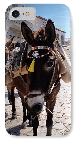 Greek Donkey IPhone Case by Louise Fahy