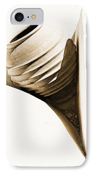 Greek Urn IPhone Case by Meirion Matthias