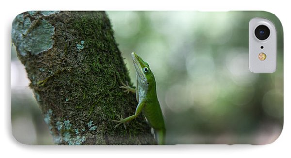 Green Anole IPhone Case by Christopher L Thomley