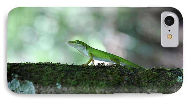 Green Anole Posing IPhone Case by Christopher L Thomley