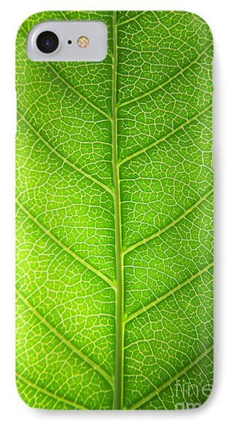 Green Botany -  Part 3 Of 3 IPhone Case by Sean Davey