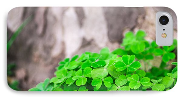 Green Clover And Grey Tree IPhone Case by John Williams