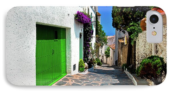 IPhone Case featuring the photograph Green Door Passage  by Harry Spitz
