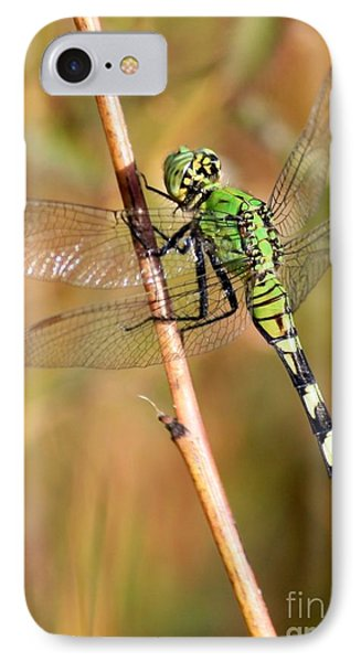 Green Dragonfly Closeup Phone Case by Carol Groenen