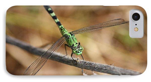 Green Dragonfly On Twig Phone Case by Carol Groenen