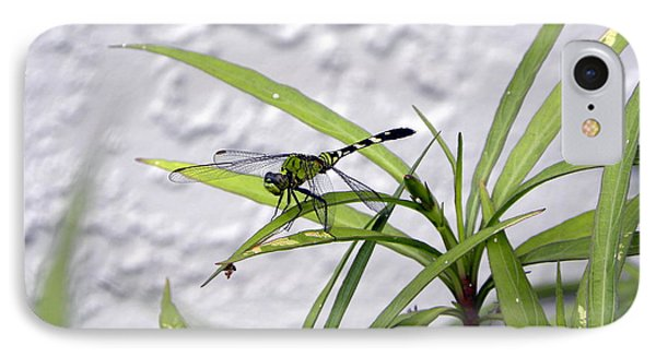 IPhone Case featuring the photograph Green Dragonfly by Terri Mills