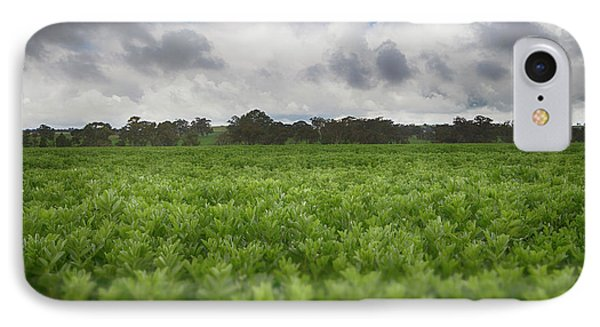 IPhone Case featuring the photograph Green Fields 4 by Douglas Barnard