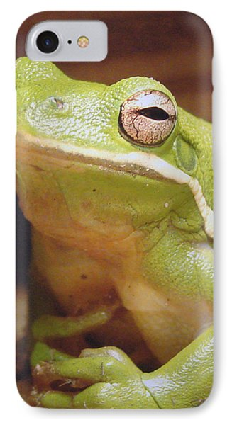 Green Frog IPhone Case by J R Seymour