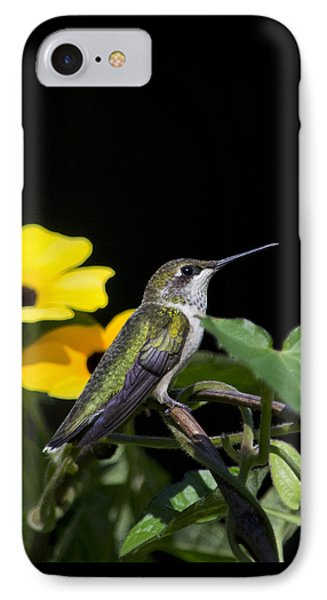 Green Garden Jewel Hummingbird Square IPhone Case by Christina Rollo