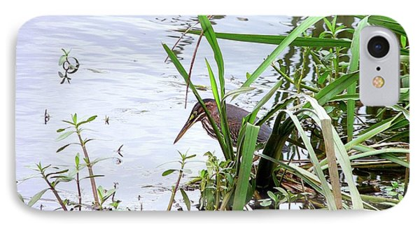 Green Heron Phone Case by Al Powell Photography USA