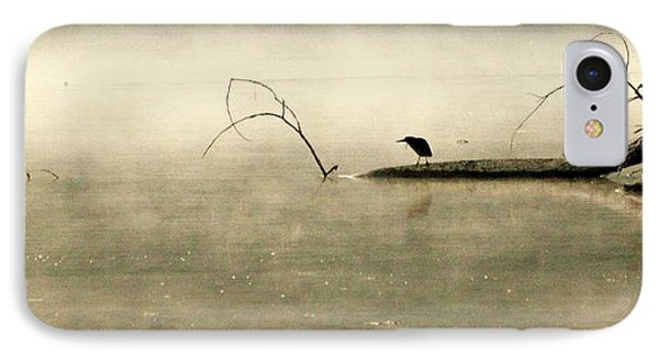 Green Heron In Dawn Mist IPhone Case by Kathy Barney
