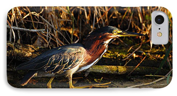 IPhone Case featuring the photograph Green Heron by Larry Ricker