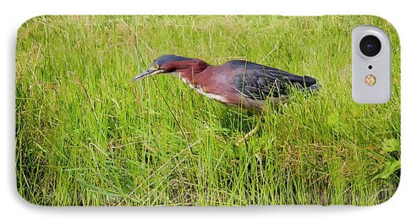 Green Heron On The Hunt Phone Case by Ricky L Jones