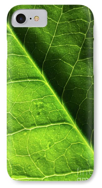 IPhone Case featuring the photograph Green Leaf Veins by Ana V Ramirez