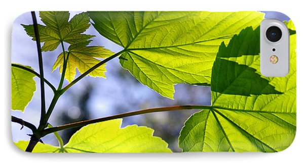 Green Leaves IPhone Case by Carlos Caetano