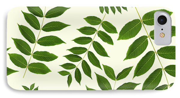 IPhone Case featuring the mixed media Botanical Pattern by Christina Rollo