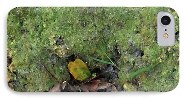 Green Man Spirit Photo IPhone Case by Gina O'Brien