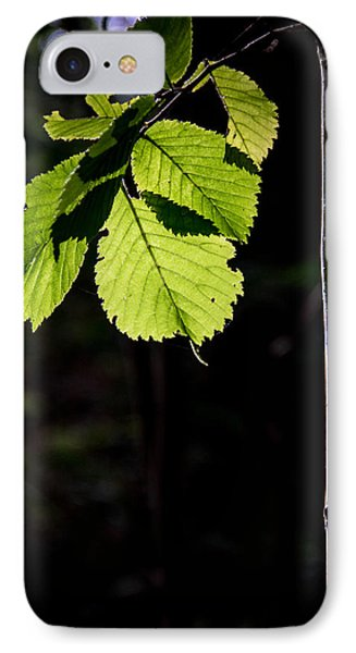 IPhone Case featuring the photograph Green by Odd Jeppesen