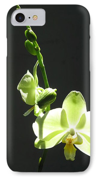 IPhone Case featuring the photograph Green Orchids by Alfred Ng
