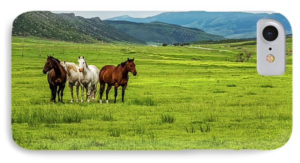 Green Pastures Phone Case by Jon Burch Photography