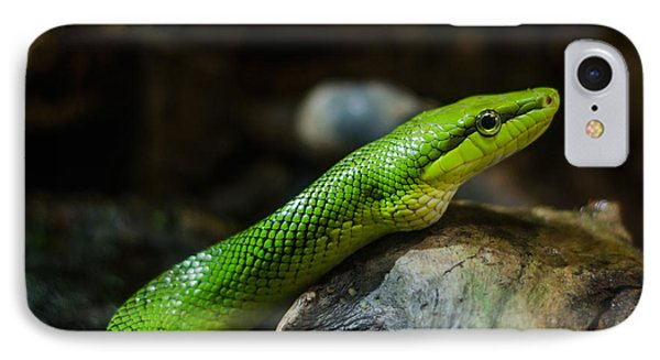 Green Snake IPhone Case by Daniel Precht