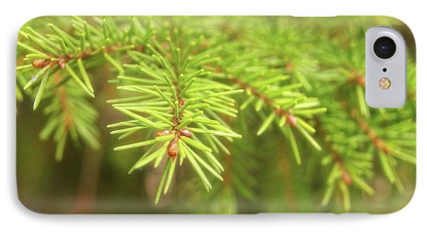 Green Spruce Branch IPhone Case by Anton Kalinichev