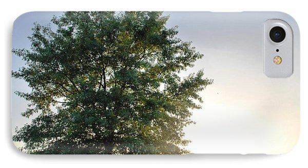 Green Tree Bright Sunshine Background IPhone Case by Matt Harang
